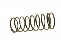 Timing chain tensioner spring