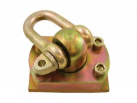 Swivel Shackle